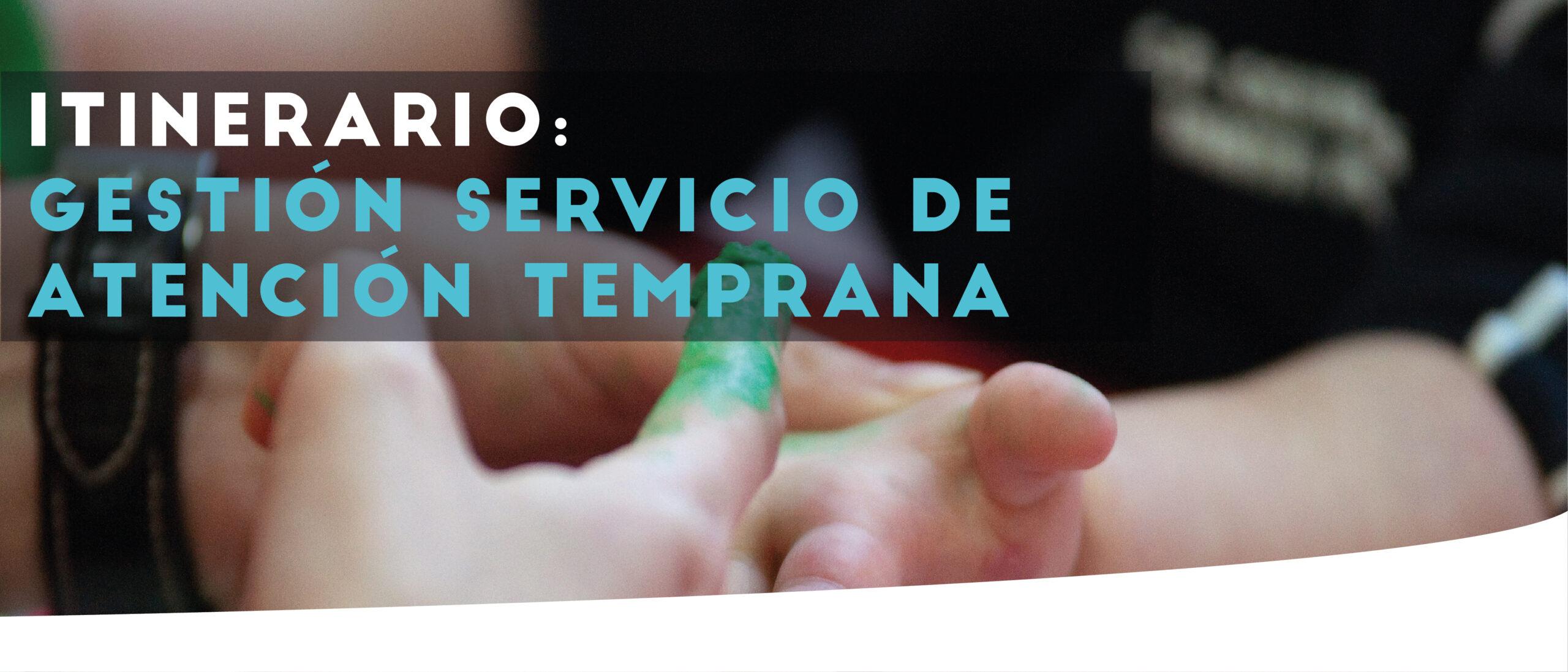 Gestión Servicio AT