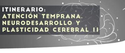 Neurodesarrollo 2